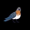 Birb's avatar