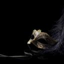Masquerade's avatar