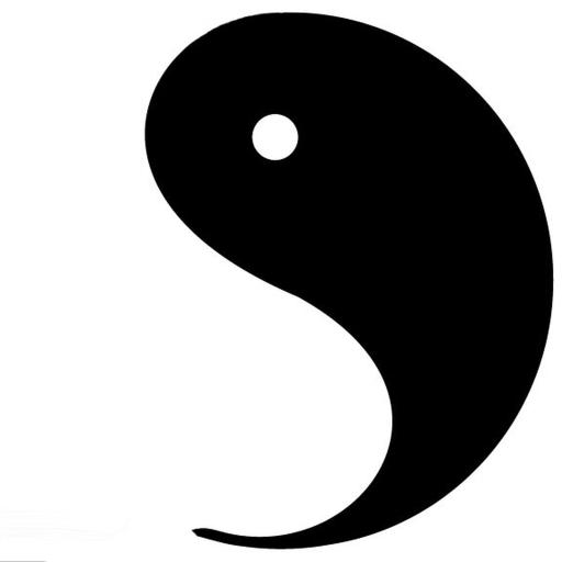 Yin Bot