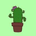 Kaktüs Bot's avatar