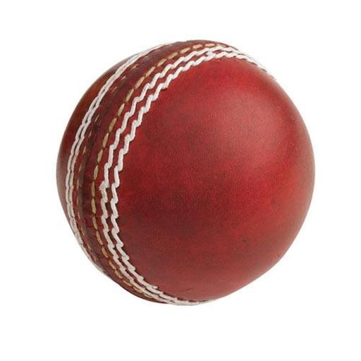 cricket-scores | Discord Bots