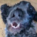 alex_'s dog's avatar