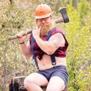 Virtual Lumberjack