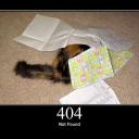[http] HTTP-Cat's avatar