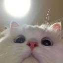 Justpro's avatar