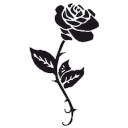 elfe's avatar