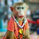 avatar of Наркоман