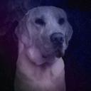 Vroooomtex's avatar