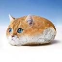 Poğaça Kedi's avatar