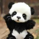 || Panda ||'s avatar
