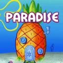 Pirates Paradise Friends & Allies