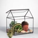 The BarPos' Terrarium