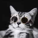 Chill Rewards's avatar