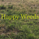 Happy weeds OSRS's avatar