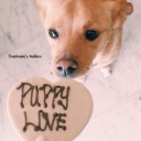 ♥*♡Toulouse's Babies♡*♥
