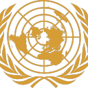 Voting for United Nations RP