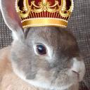 The Bunlock empire's avatar