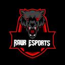 [RAWR] Rawr Esports