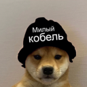 doge man support