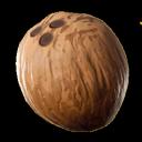 Coconut Bot Support Server's avatar